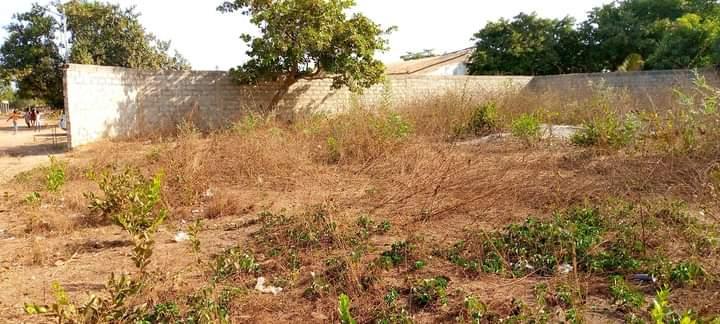 Terreno com Muro